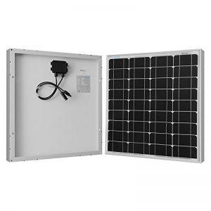 renogy 50 watts 12 volts panneau solaire monocristallin de la marque Renogy image 0 produit